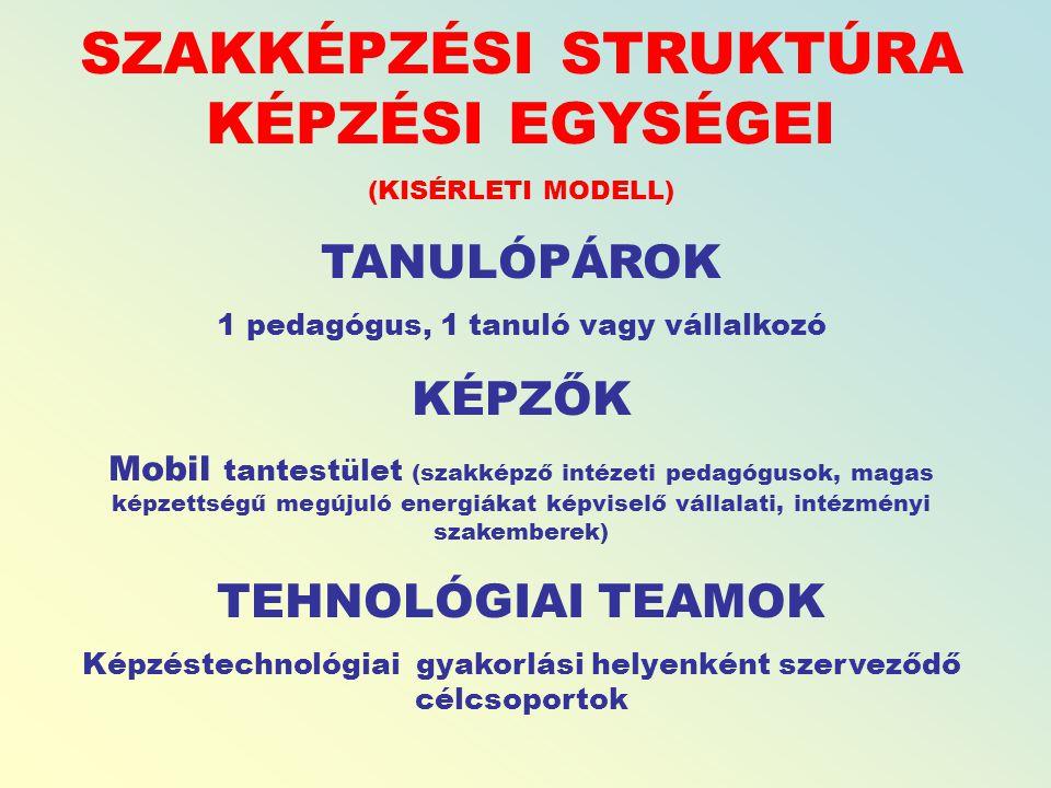 SZAKKÉPZÉSI STRUKTÚRA KÉPZÉSI EGYSÉGEI (KISÉRLETI MODELL) TANULÓPÁROK 1 pedagógus, 1 tanuló vagy vállalkozó KÉPZŐK Mobil tantestület (szakképző intézeti pedagógusok, magas képzettségű megújuló energiákat képviselő vállalati, intézményi szakemberek) TEHNOLÓGIAI TEAMOK Képzéstechnológiai gyakorlási helyenként szerveződő célcsoportok