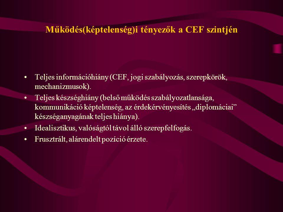 Működés(képtelenség)i tényezők a CEF szintjén Teljes információhiány (CEF, jogi szabályozás, szerepkörök, mechanizmusok). Teljes készséghiány (belső m