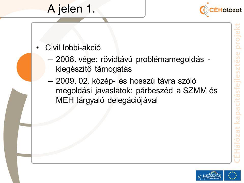 A jelen 1. Civil lobbi-akció –2008. vége: rövidtávú problémamegoldás - kiegészítő támogatás –2009.