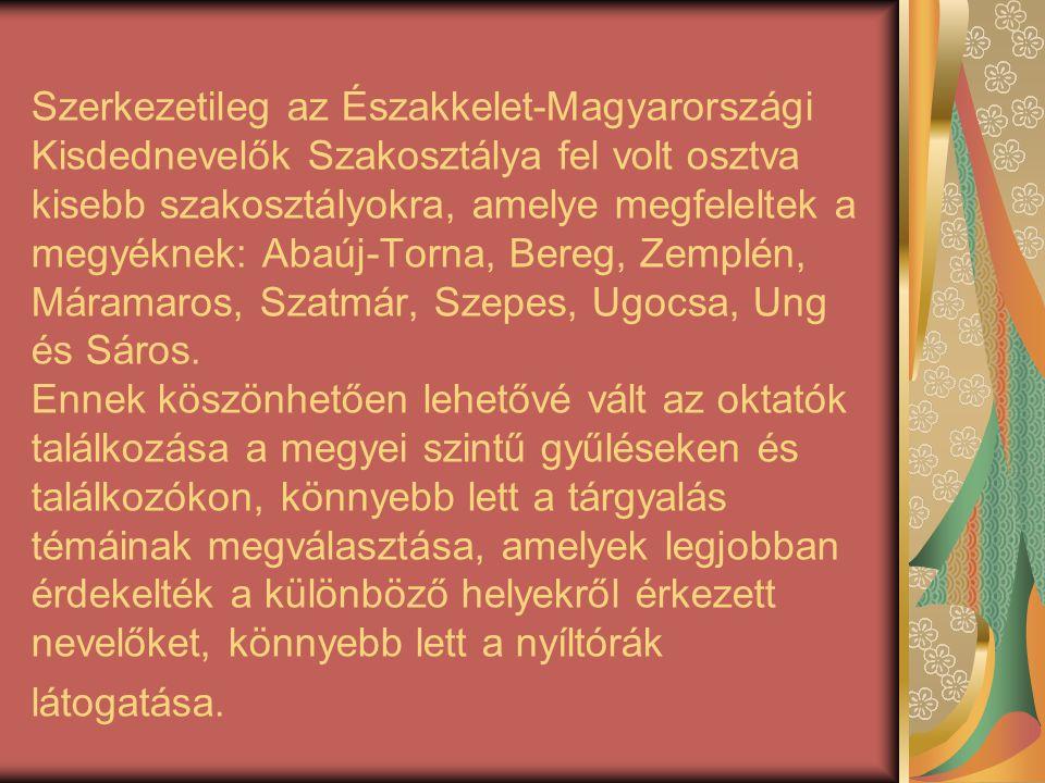 Szerkezetileg az Északkelet-Magyarországi Kisdednevelők Szakosztálya fel volt osztva kisebb szakosztályokra, amelye megfeleltek a megyéknek: Abaúj-Tor