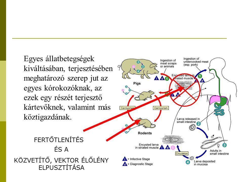 Fertőtlenítés kémiai módszerei A fertőtlenítőszerek hatásukat annak köszönhetik, hogy: - oxidatív alapon károsítják a sejteket - megváltoztatják a sejtmembrán permeabilitását, illetve roncsolják a sejthártyát - a sejtek fehérjekomponenseit koagulálják - inaktiválják a sejtek létfontosságú enzimjeit