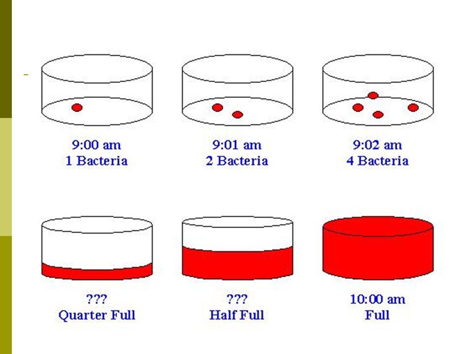 Klór és vegyületei A klórgáz vizes közegben hipoklórossavat (HOCl) képez, amely erős roncsoló hatása révén csíraölő.