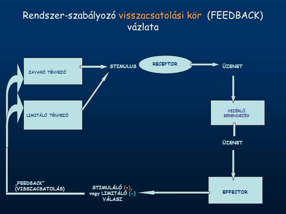 """ZAVARÓ TÉNYEZŐ LIMITÁLÓ TÉNYEZŐ RECEPTOR STIMULUSÜZENET VEZÉRLŐ BERENDEZÉS ÜZENET EFFECTOR STIMULÁLÓ (+), vagy LIMITÁLÓ (-) VÁLASZ """"FEEDBACK (VISSZACSATOLÁS) Rendszer-szabályozó visszacsatolási kör (FEEDBACK) vázlata"""
