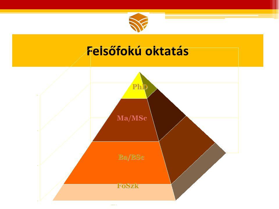 Felsőfokú oktatás FoSzk Ba/BSc Ma/MSc PhD