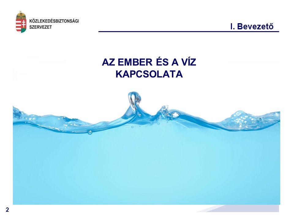 13 III.Tapasztalataink A vízbe esés jellemző okai: -ALKOHOL .