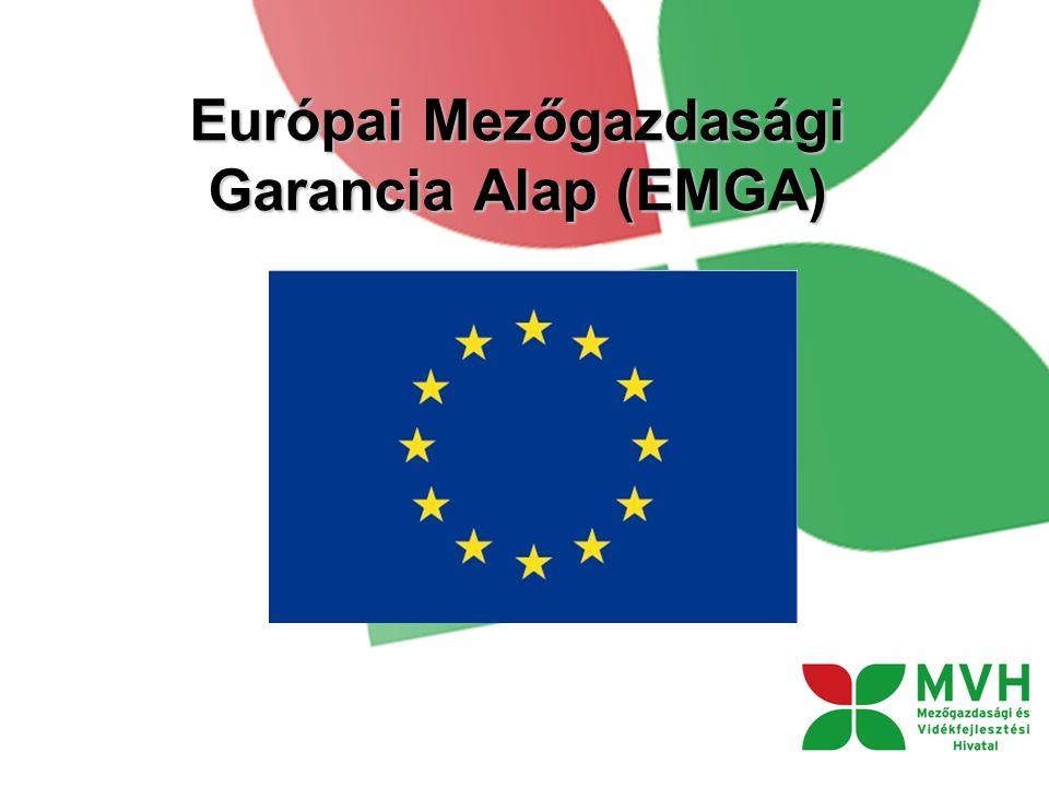 Európai Mezőgazdasági Garancia Alap (EMGA)
