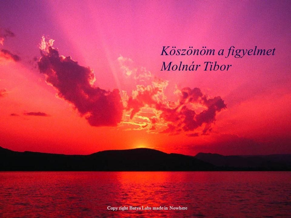 Köszönöm a figyelmet Molnár Tibor Copy right Batya Labs made in Nowhere