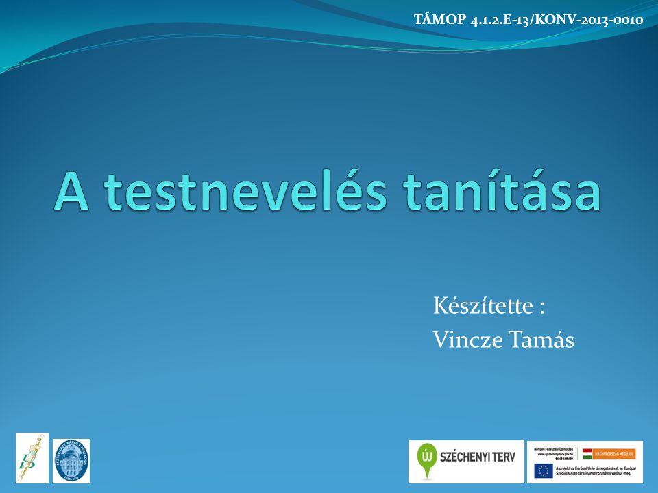 Tanulási motiváció Beépült Külső (extrensic) Presztízs Belső (intrinsic) TÁMOP 4.1.2.E-13/KONV-2013-0010
