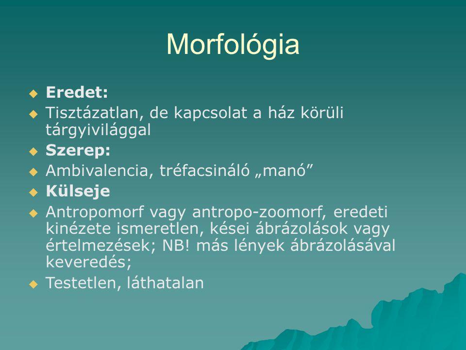 """Morfológia   Eredet:   Tisztázatlan, de kapcsolat a ház körüli tárgyivilággal   Szerep:   Ambivalencia, tréfacsináló """"manó""""   Külseje   An"""
