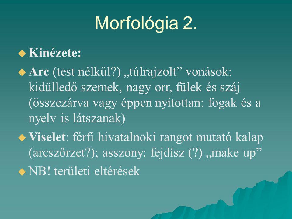 """Morfológia 2.   Kinézete:   Arc (test nélkül?) """"túlrajzolt"""" vonások: kidülledő szemek, nagy orr, fülek és száj (összezárva vagy éppen nyitottan: f"""