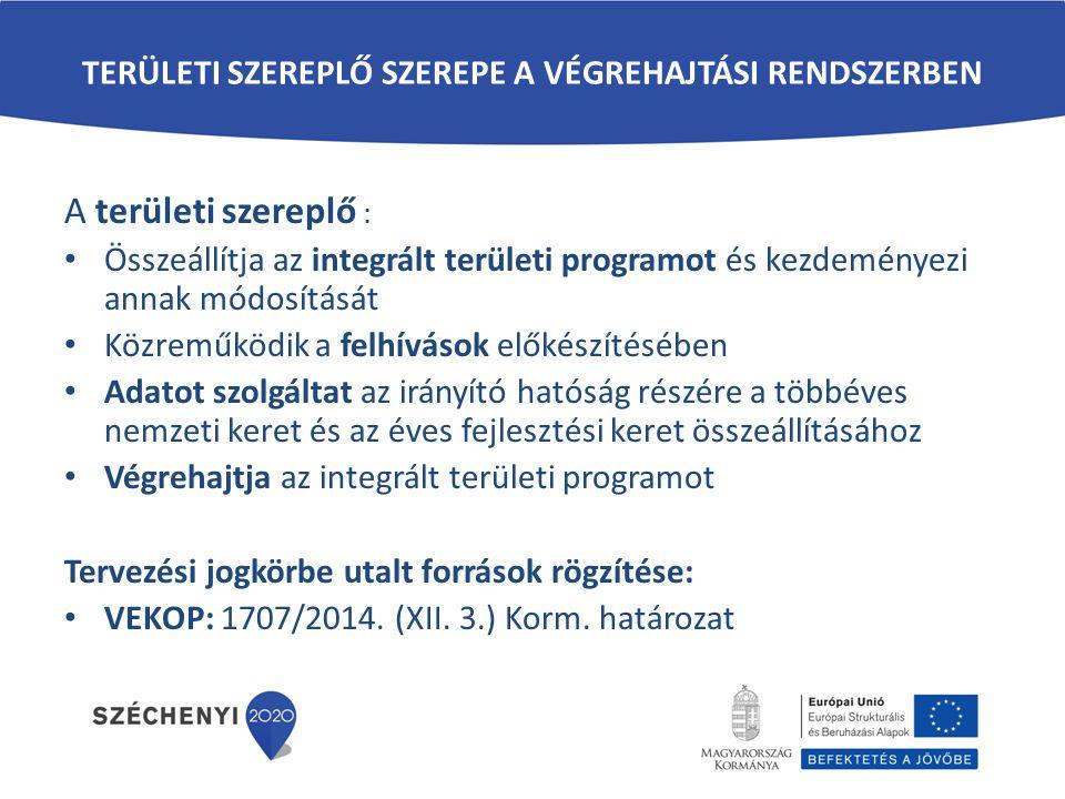 TERÜLETI SZEREPLŐ SZEREPE A VÉGREHAJTÁSI RENDSZERBEN A területi szereplő : Összeállítja az integrált területi programot és kezdeményezi annak módosítá