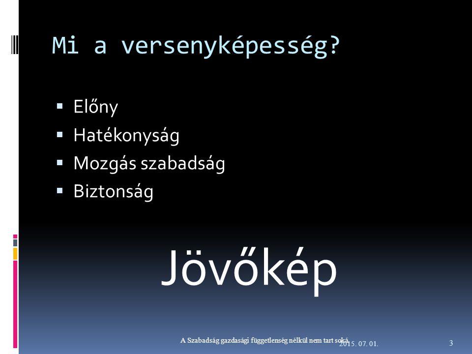 Financiális kérdések avagy a gazdasági függetlenség  Gazdasági függetlenség fogalma  A lehetőség a cselekvésre  A eszközök rendelkezésre állása a cselekvésre  A magyar (vállalati) gazdálkodás jellemzői  Függés az állami piaci intervenciótól  Függés a szolgáltatóktól – magas közüzemi kiadások  Kiszolgáltatottság a piaci környezet változásainak 2015.