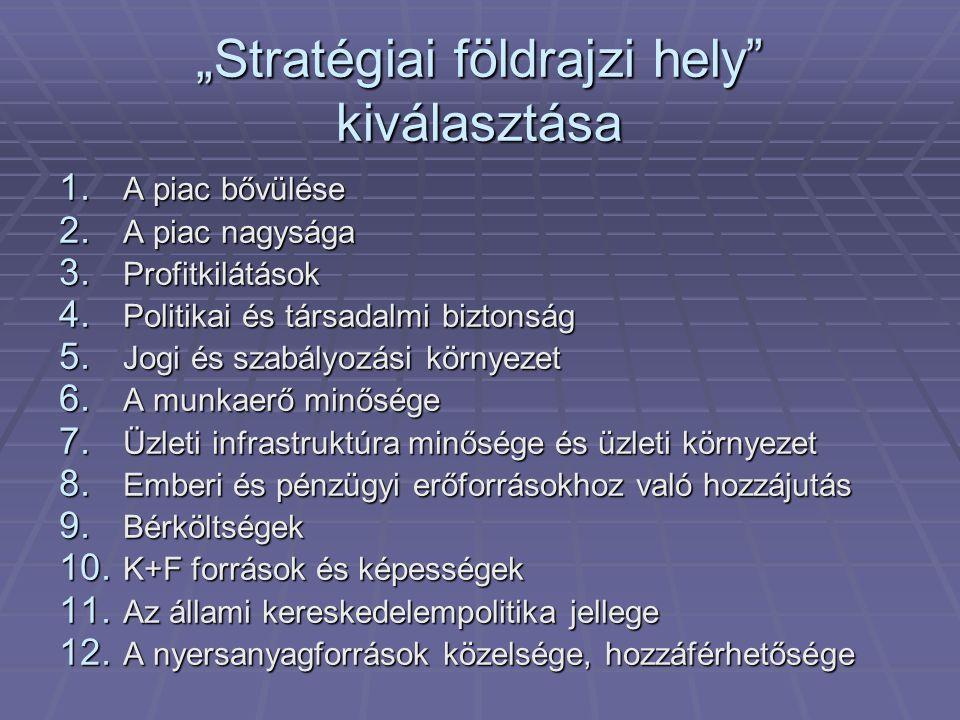 """""""Stratégiai földrajzi hely"""" kiválasztása 1. A piac bővülése 2. A piac nagysága 3. Profitkilátások 4. Politikai és társadalmi biztonság 5. Jogi és szab"""