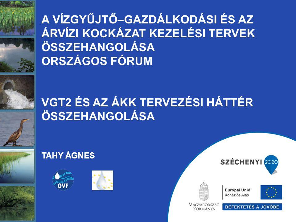VGT tervezési alapegység: víztest és közvetlen vízgyűjtője (felszíni és felszín alatti víztestek) VGT tervezési terület: –Duna vízgyűjtőkerület, –Magyarország, –rész-vízgyűjtők: Duna, Tisza, Dráva, Balaton –Tervezési alegységek: 42 db ÁKK tervezési alapegység: kezelési egység (árvízi öblözet és védelmi szakasz, belvízi öblözet és védelmi szakasz) ÁKK tervezési terület: –Duna vízgyűjtőkerület, –Magyarország, –rész-vízgyűjtők: Duna, Tisza, Dráva, Balaton –Tervezési (kezelési) egységek: 8 db VGT jogalap 2000/60/EK Víz Keretirányelv 221/2004 (VII.21.) Korm.