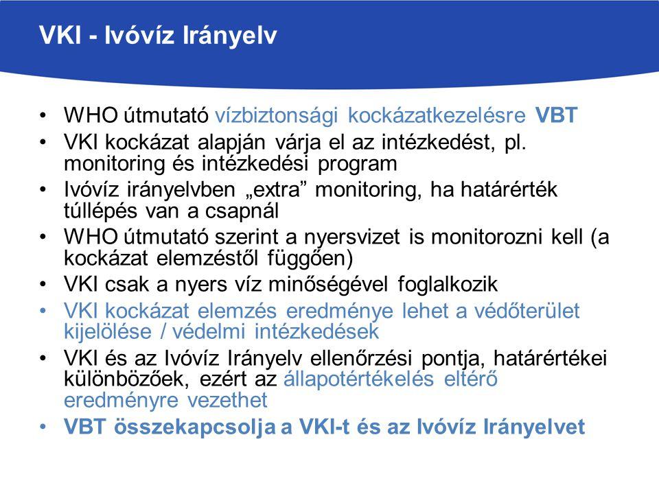 VKI végrehajtása - vízügyi igazgatási szervek az érdekeltek bevonásával Ivóvíz Irányelv végrehajtása - közegészségügyi hatóság és víziközmű vállalatok –Nincs adatcsere a hatóságok között és a vízműnek legalább két hatóság felé kell küldeni a különböző monitoring eredményeket Merev jogszabályok, előírások automatikus végrehajtása Magyarországon már régóta kell monitorozni a nyers vizet (21/2002.