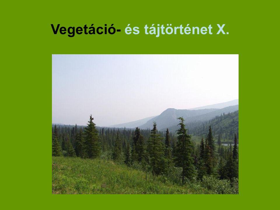 Vegetáció- és tájtörténet X.