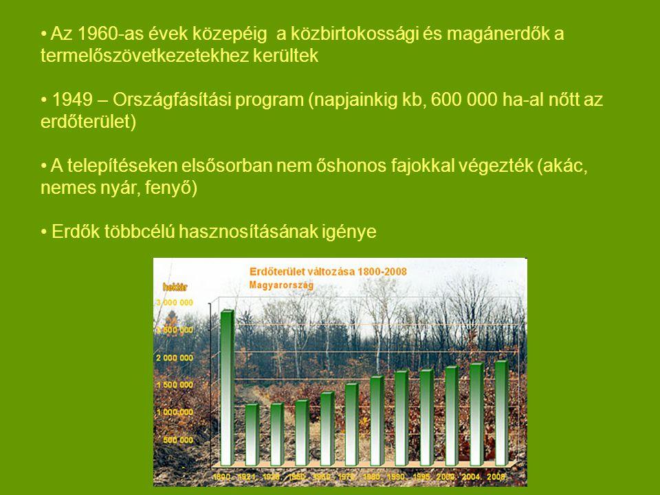 Az 1960-as évek közepéig a közbirtokossági és magánerdők a termelőszövetkezetekhez kerültek 1949 – Országfásítási program (napjainkig kb, 600 000 ha-al nőtt az erdőterület) A telepítéseken elsősorban nem őshonos fajokkal végezték (akác, nemes nyár, fenyő) Erdők többcélú hasznosításának igénye