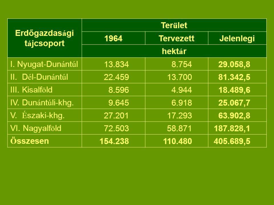 Erdőgazdas á gi t á jcsoport Ter ü let 1964TervezettJelenlegi hekt á r I.