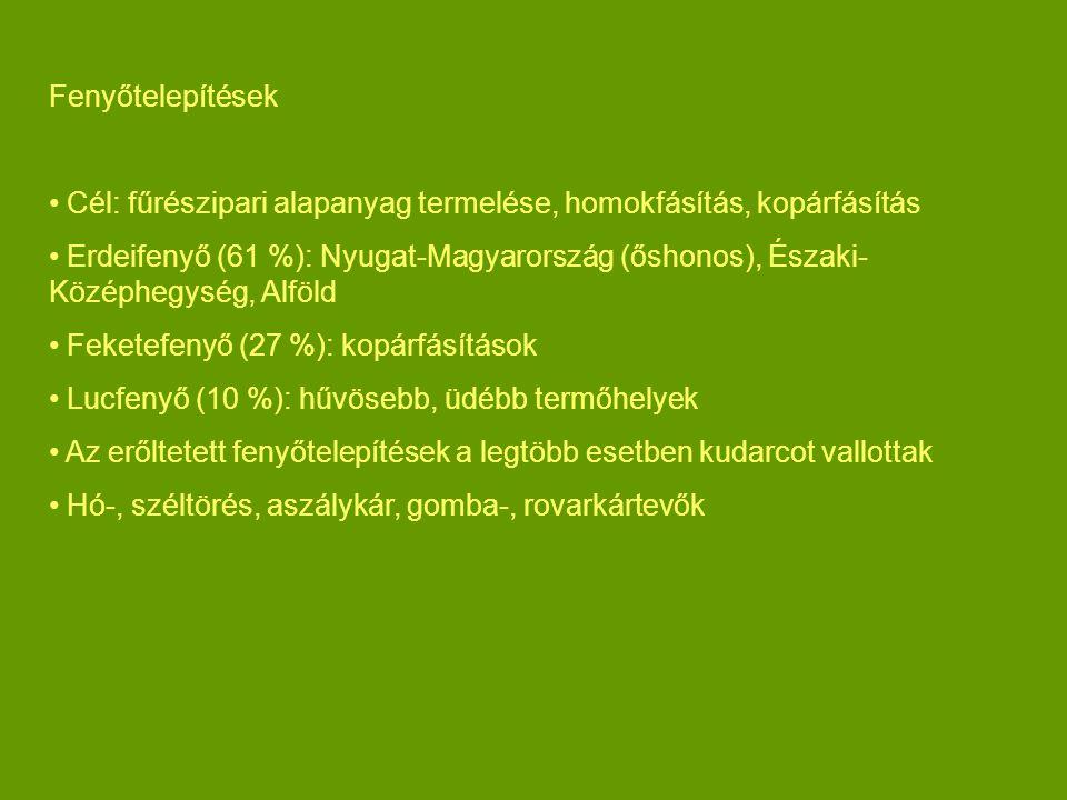 Fenyőtelepítések Cél: fűrészipari alapanyag termelése, homokfásítás, kopárfásítás Erdeifenyő (61 %): Nyugat-Magyarország (őshonos), Északi- Középhegység, Alföld Feketefenyő (27 %): kopárfásítások Lucfenyő (10 %): hűvösebb, üdébb termőhelyek Az erőltetett fenyőtelepítések a legtöbb esetben kudarcot vallottak Hó-, széltörés, aszálykár, gomba-, rovarkártevők