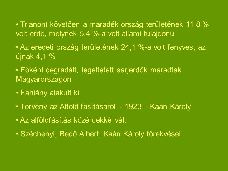 Trianont követően a maradék ország területének 11,8 % volt erdő, melynek 5,4 %-a volt állami tulajdonú Az eredeti ország területének 24,1 %-a volt fenyves, az újnak 4,1 % Főként degradált, legeltetett sarjerdők maradtak Magyarországon Fahiány alakult ki Törvény az Alföld fásításáról - 1923 – Kaán Károly Az alföldfásítás közérdekké vált Széchenyi, Bedő Albert, Kaán Károly törekvései