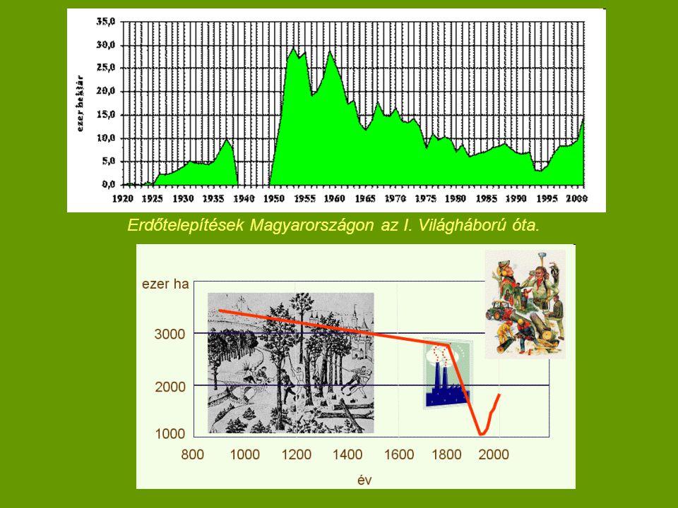 Erdőtelepítések Magyarországon az I. Világháború óta.