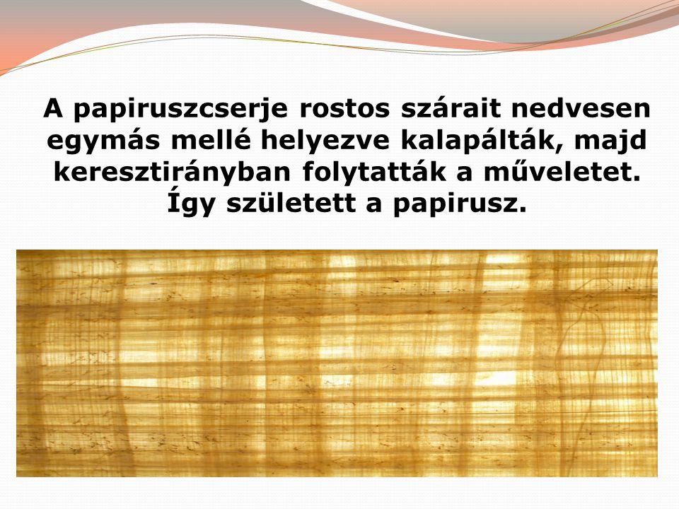 A papiruszcserje rostos szárait nedvesen egymás mellé helyezve kalapálták, majd keresztirányban folytatták a műveletet. Így született a papirusz.