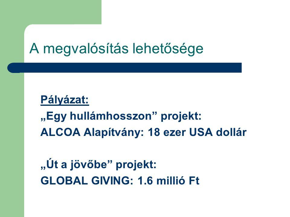 """A megvalósítás lehetősége Pályázat: """"Egy hullámhosszon projekt: ALCOA Alapítvány: 18 ezer USA dollár """"Út a jövőbe projekt: GLOBAL GIVING: 1.6 millió Ft"""