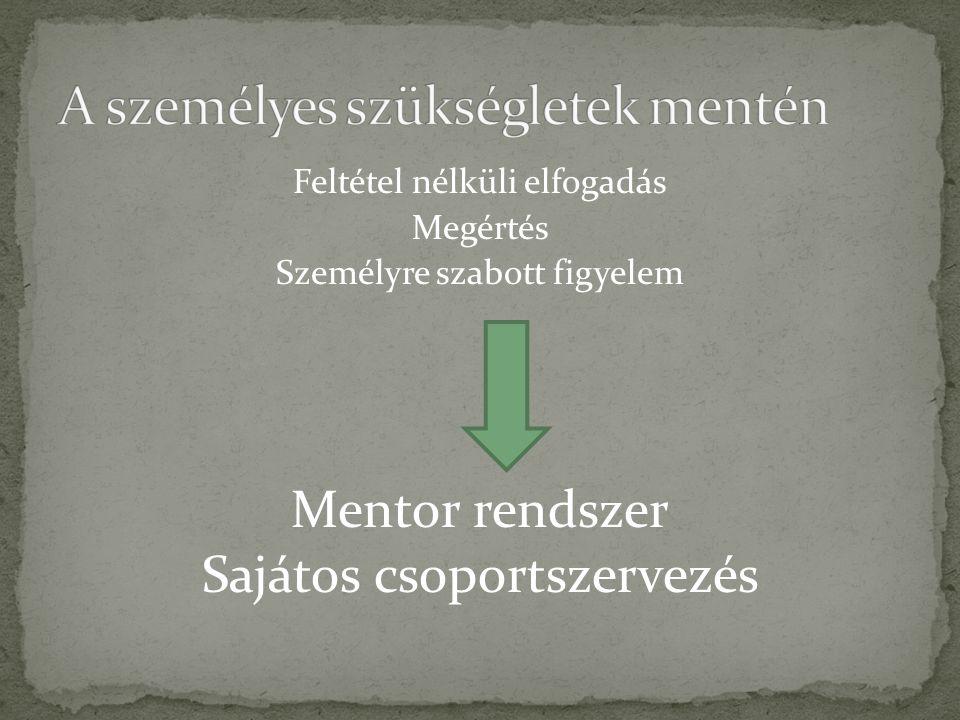 Feltétel nélküli elfogadás Megértés Személyre szabott figyelem Mentor rendszer Sajátos csoportszervezés