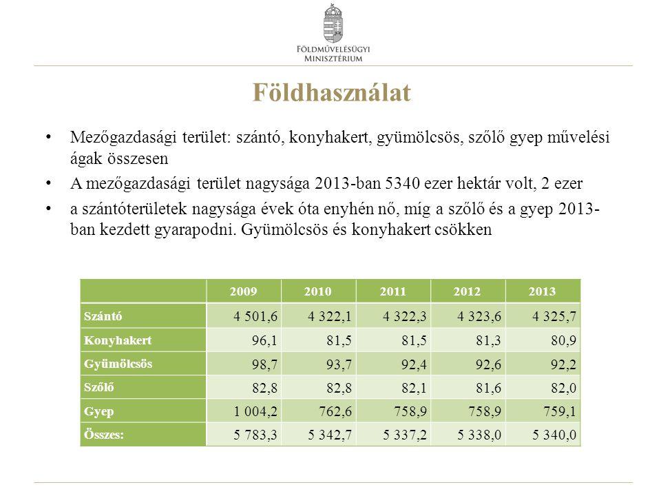 Földhasználat Mezőgazdasági terület: szántó, konyhakert, gyümölcsös, szőlő gyep művelési ágak összesen A mezőgazdasági terület nagysága 2013-ban 5340