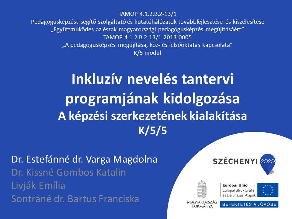 Inkluzív nevelés tantervi programjának kidolgozása A képzési szerkezetének kialakítása K/5/5 Dr. Estefánné dr. Varga Magdolna Dr. Kissné Gombos Katali