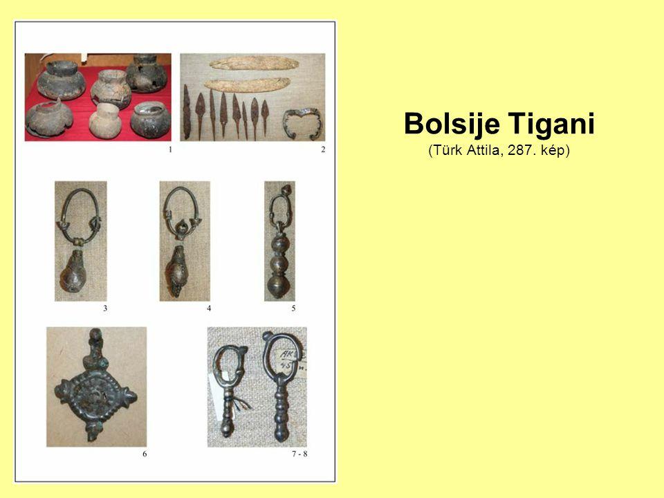 Bolsije Tigani (Türk Attila, 287. kép)