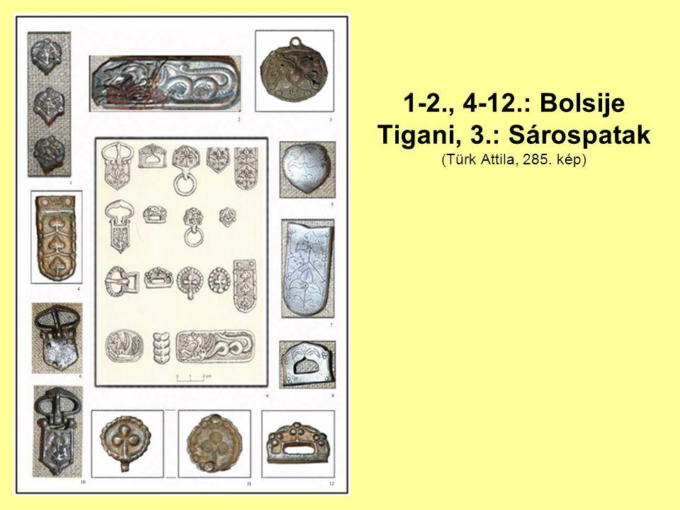 1-2., 4-12.: Bolsije Tigani, 3.: Sárospatak (Türk Attila, 285. kép)