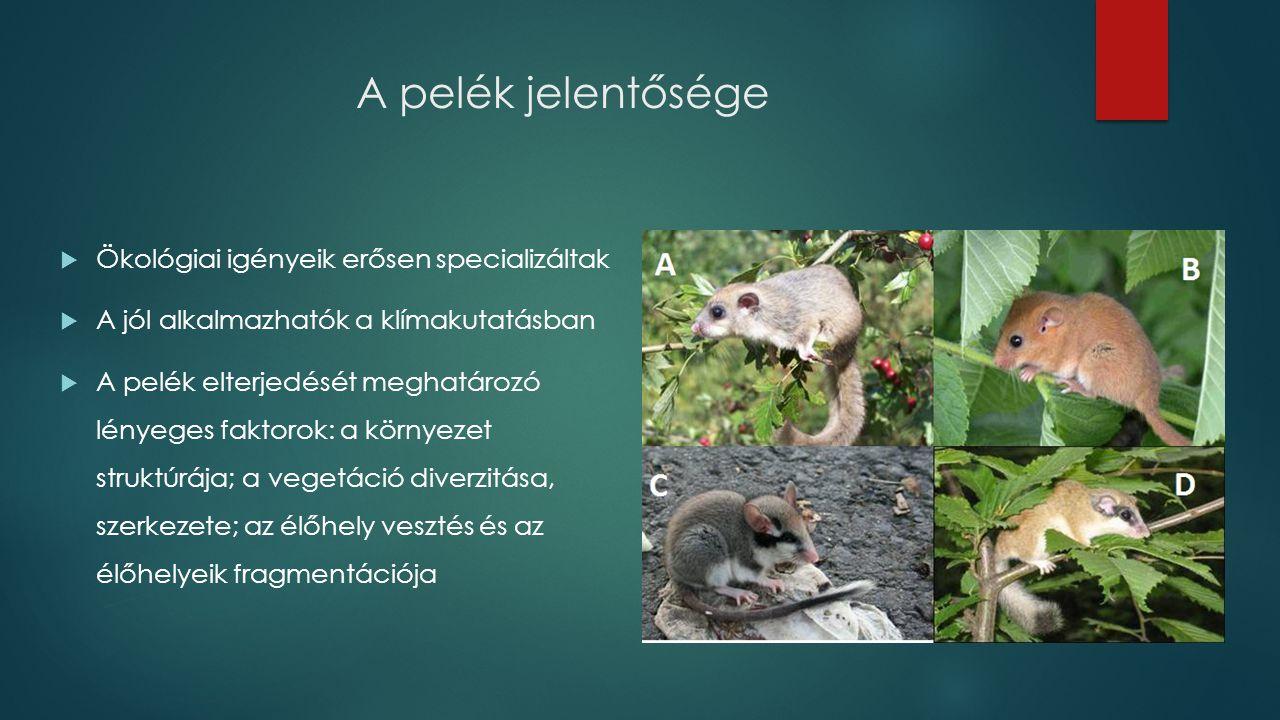 A pelék jelentősége  Ökológiai igényeik erősen specializáltak  A jól alkalmazhatók a klímakutatásban  A pelék elterjedését meghatározó lényeges faktorok: a környezet struktúrája; a vegetáció diverzitása, szerkezete; az élőhely vesztés és az élőhelyeik fragmentációja