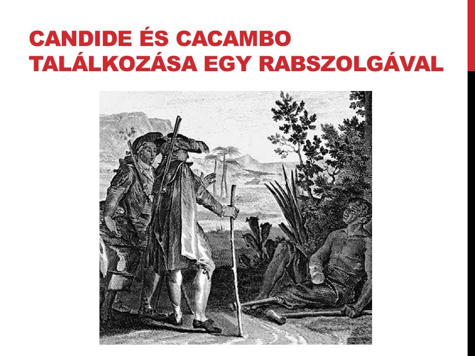 CANDIDE ÉS CACAMBO TALÁLKOZÁSA EGY RABSZOLGÁVAL