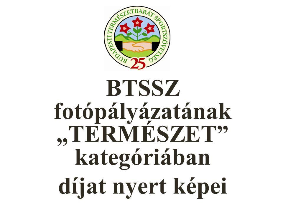 """BTSSZ fotópályázatának """"TERMÉSZET kategóriában díjat nyert képei"""