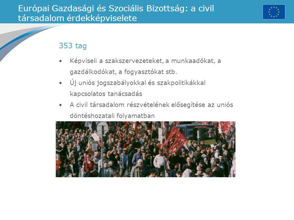 Európai Gazdasági és Szociális Bizottság: a civil társadalom érdekképviselete Képviseli a szakszervezeteket, a munkaadókat, a gazdálkodókat, a fogyasz