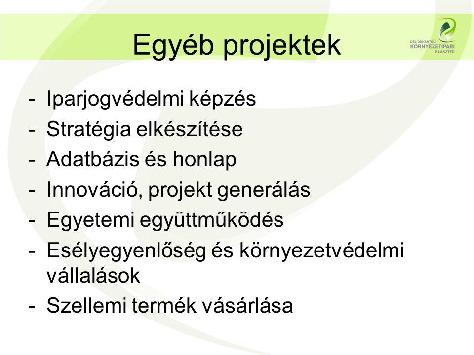 Egyéb projektek -Iparjogvédelmi képzés -Stratégia elkészítése -Adatbázis és honlap -Innováció, projekt generálás -Egyetemi együttműködés -Esélyegyenlő