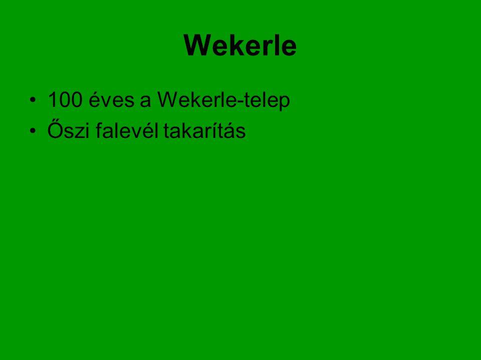 Wekerle 100 éves a Wekerle-telep Őszi falevél takarítás