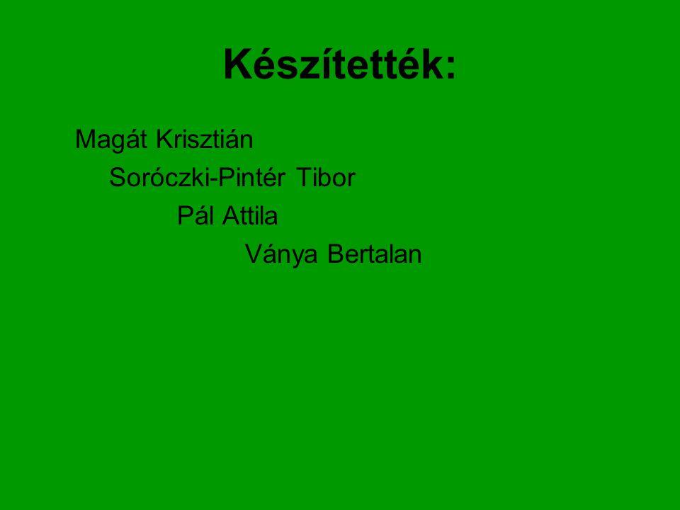 Készítették: Magát Krisztián Soróczki-Pintér Tibor Pál Attila Ványa Bertalan