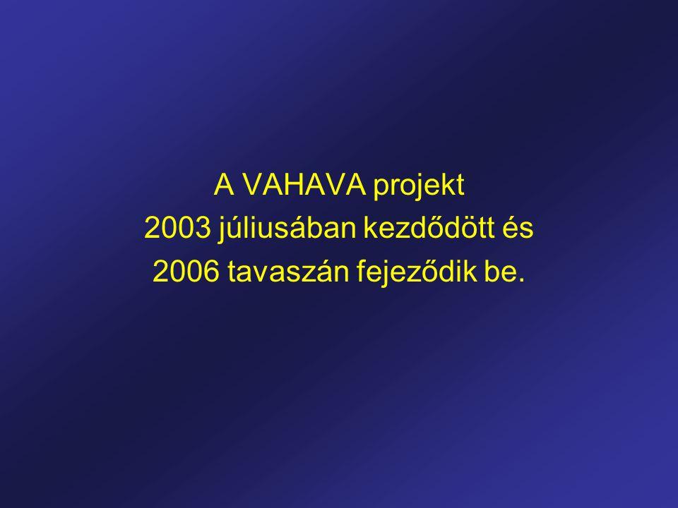 A VAHAVA projekt 2003 júliusában kezdődött és 2006 tavaszán fejeződik be.