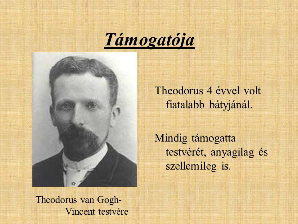 Támogatója Theodorus 4 évvel volt fiatalabb bátyjánál. Mindig támogatta testvérét, anyagilag és szellemileg is. Theodorus van Gogh- Vincent testvére