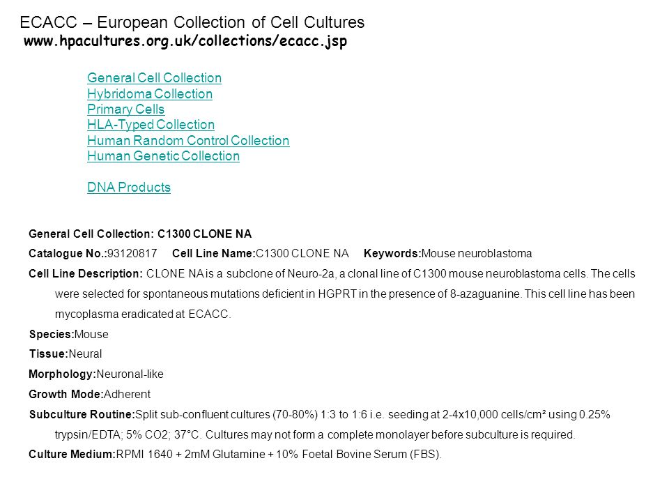 www.hpacultures.org.uk/collections/ecacc.jsp General Cell Collection Hybridoma Collection Primary Cells HLA-Typed Collection Human Random Control Collection Human Genetic Collection DNA Products General Cell Collection: C1300 CLONE NA Catalogue No.:93120817 Cell Line Name:C1300 CLONE NA Keywords:Mouse neuroblastoma Cell Line Description: CLONE NA is a subclone of Neuro-2a, a clonal line of C1300 mouse neuroblastoma cells.