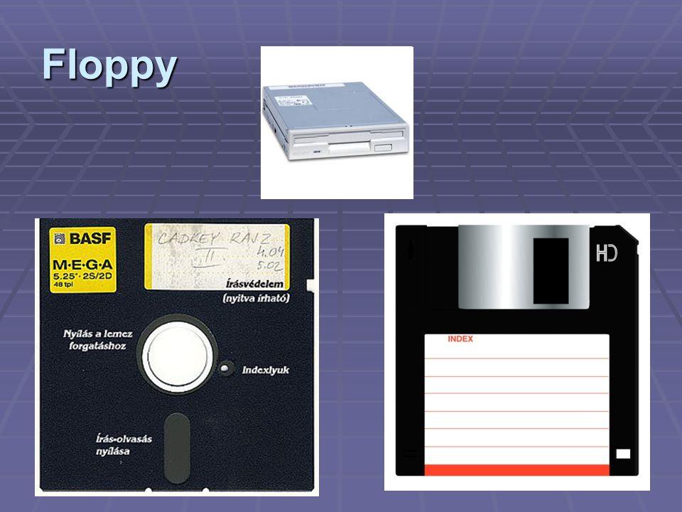 14 Floppy