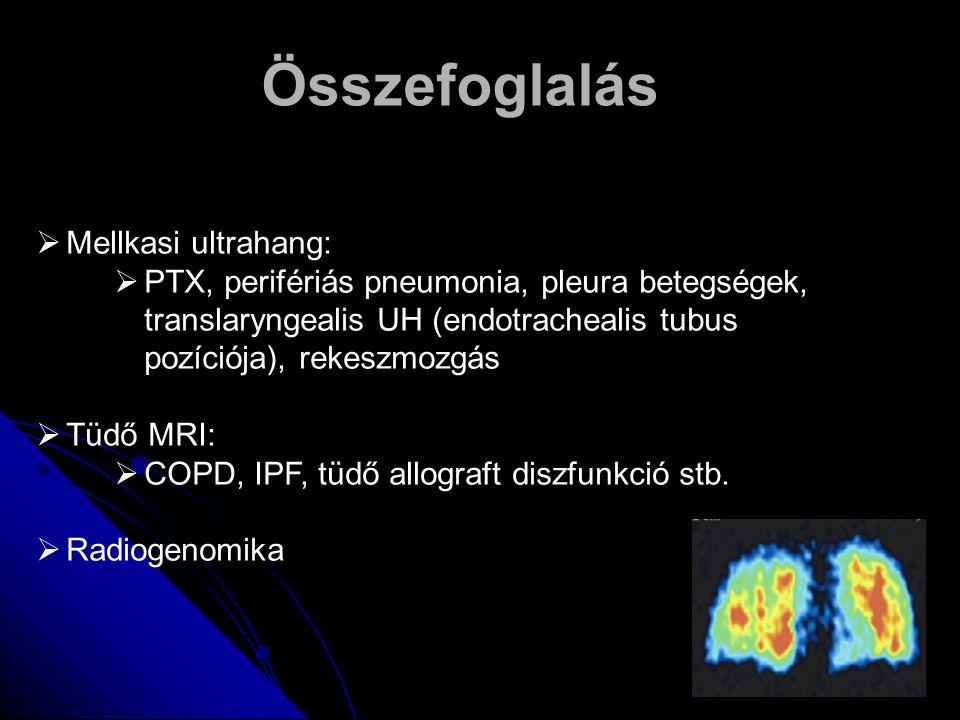 Összefoglalás  Mellkasi ultrahang:  PTX, perifériás pneumonia, pleura betegségek, translaryngealis UH (endotrachealis tubus pozíciója), rekeszmozgás