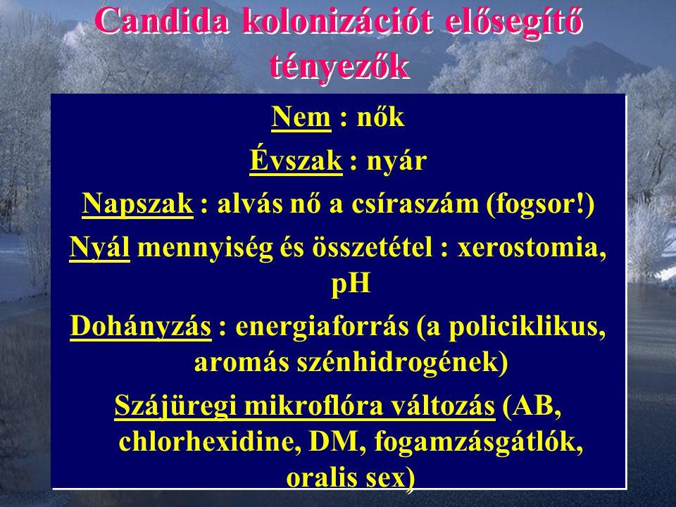 Candida kolonizációt elősegítő tényezők Nem : nők Évszak : nyár Napszak : alvás nő a csíraszám (fogsor!) Nyál mennyiség és összetétel : xerostomia, pH