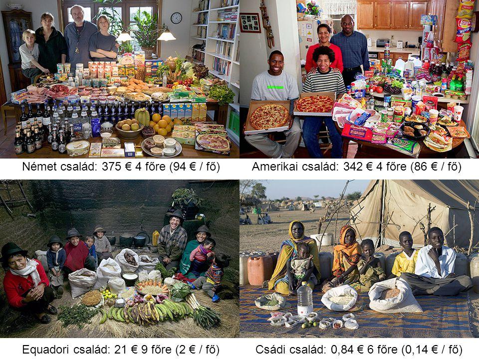 Német család: 375 € 4 főre (94 € / fő)Amerikai család: 342 € 4 főre (86 € / fő) Equadori család: 21 € 9 főre (2 € / fő)Csádi család: 0,84 € 6 főre (0,