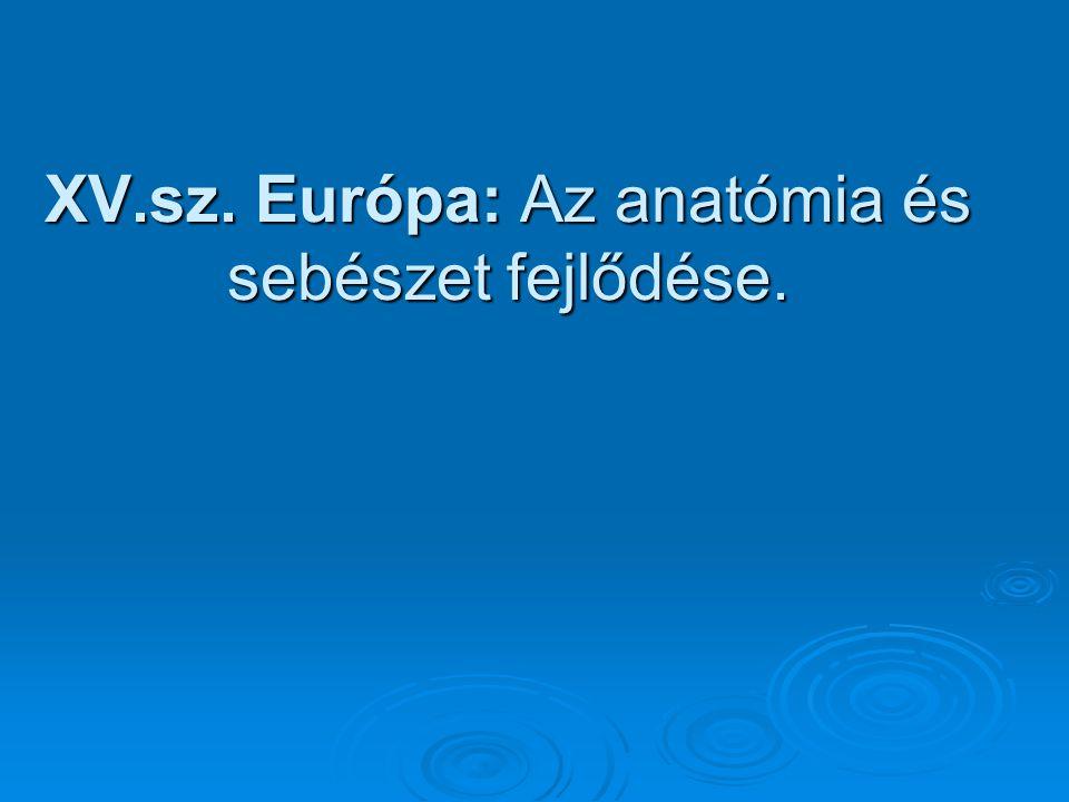 XV.sz. Európa: Az anatómia és sebészet fejlődése.