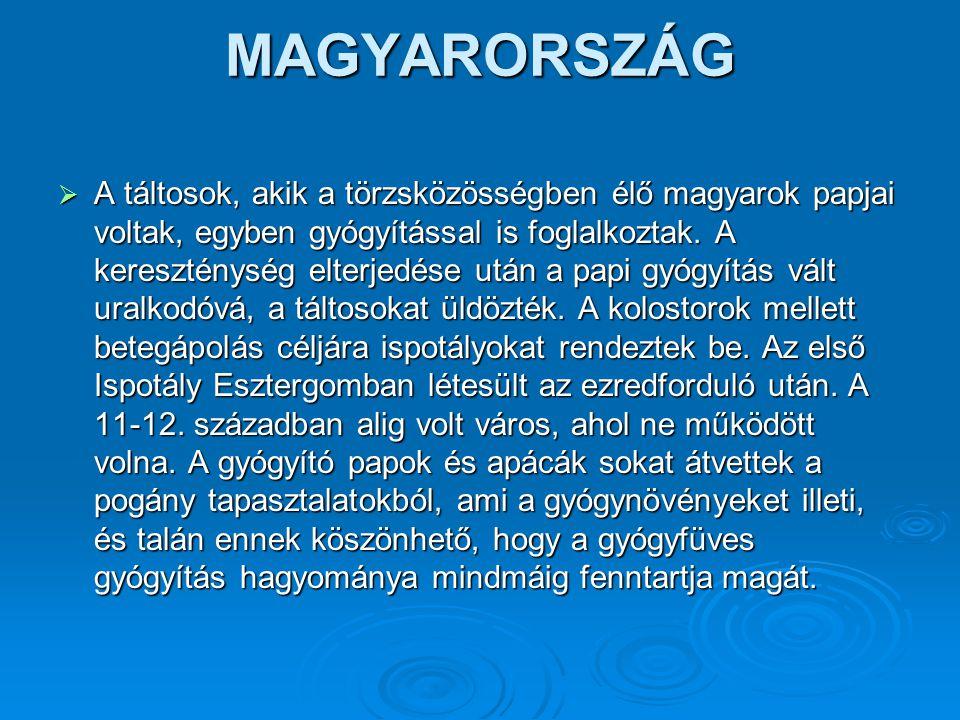 MAGYARORSZÁG  A táltosok, akik a törzsközösségben élő magyarok papjai voltak, egyben gyógyítással is foglalkoztak. A kereszténység elterjedése után a