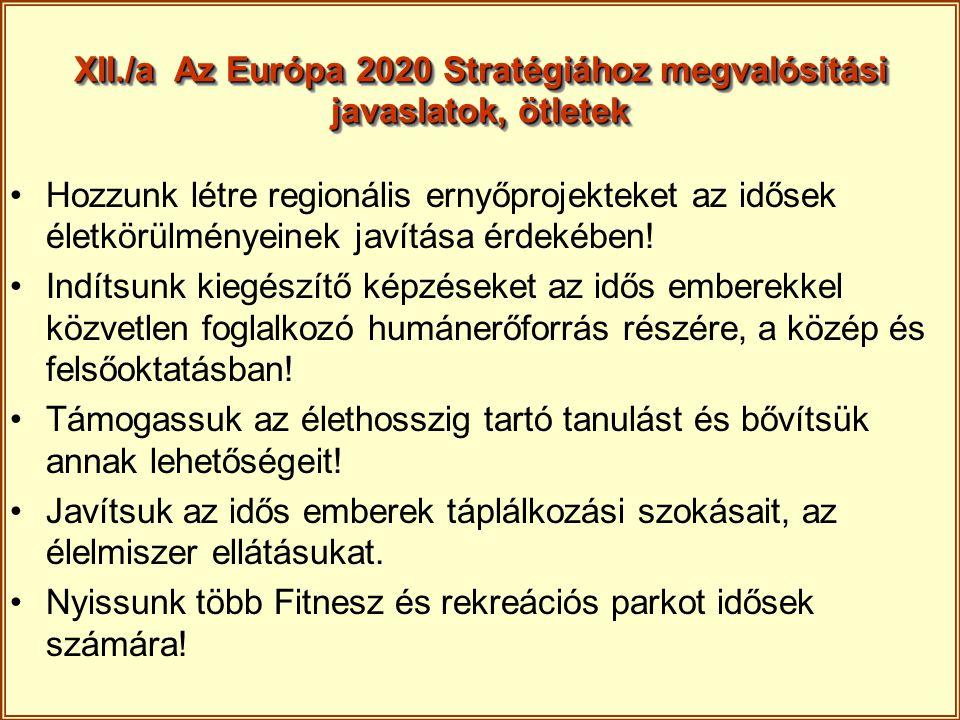XII./a Az Európa 2020 Stratégiához megvalósítási javaslatok, ötletek Hozzunk létre regionális ernyőprojekteket az idősek életkörülményeinek javítása é
