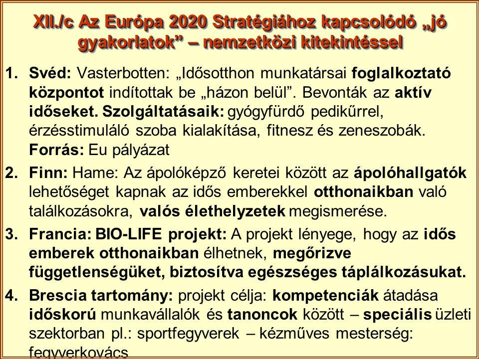 """XII./c Az Európa 2020 Stratégiához kapcsolódó """"jó gyakorlatok"""" – nemzetközi kitekintéssel 1.Svéd: Vasterbotten: """"Idősotthon munkatársai foglalkoztató"""